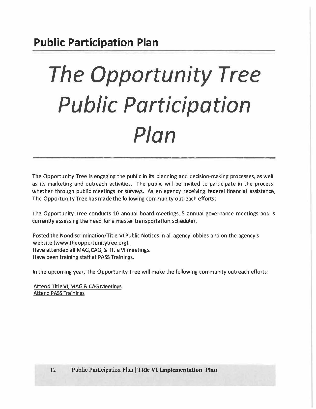 The Opportunity Tree Title VI Plan Final2018-2021_Page_12